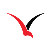 V-Form's logo. A stylized V in the shape of a flying bird
